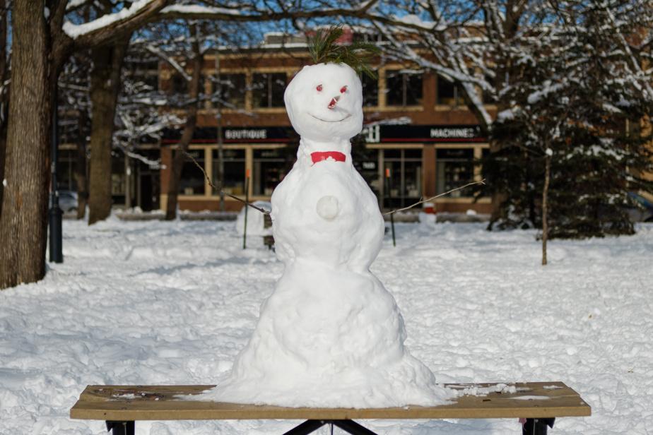 Ce sympathique personnage a pris forme sur une table de pique-nique au parc Jarry.