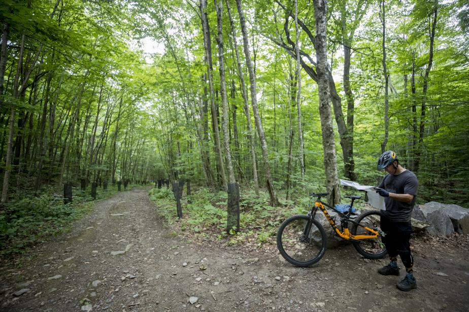 Randonneurs et cyclistes ont tous deux la possibilité de se rendre jusqu'au sommet, par des voies parfois séparées.