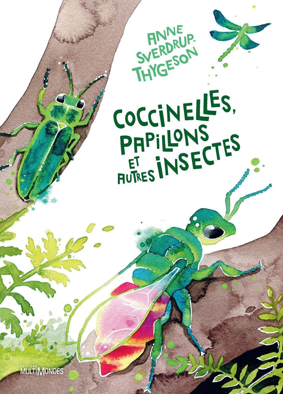 Coccinelles, papillons et autres insectes