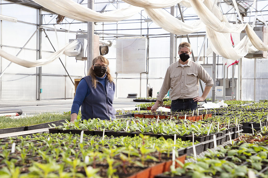 Everything is carefully planned in the production greenhouse where Alexander Reford, General Manager of Les Jardins de Métis, and Patricia Gallant, head horticulturist are located.