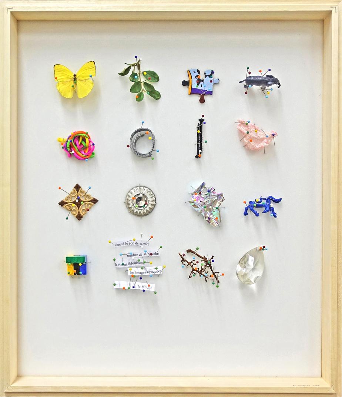 Un exemple de casier entomologique de Michel Goulet