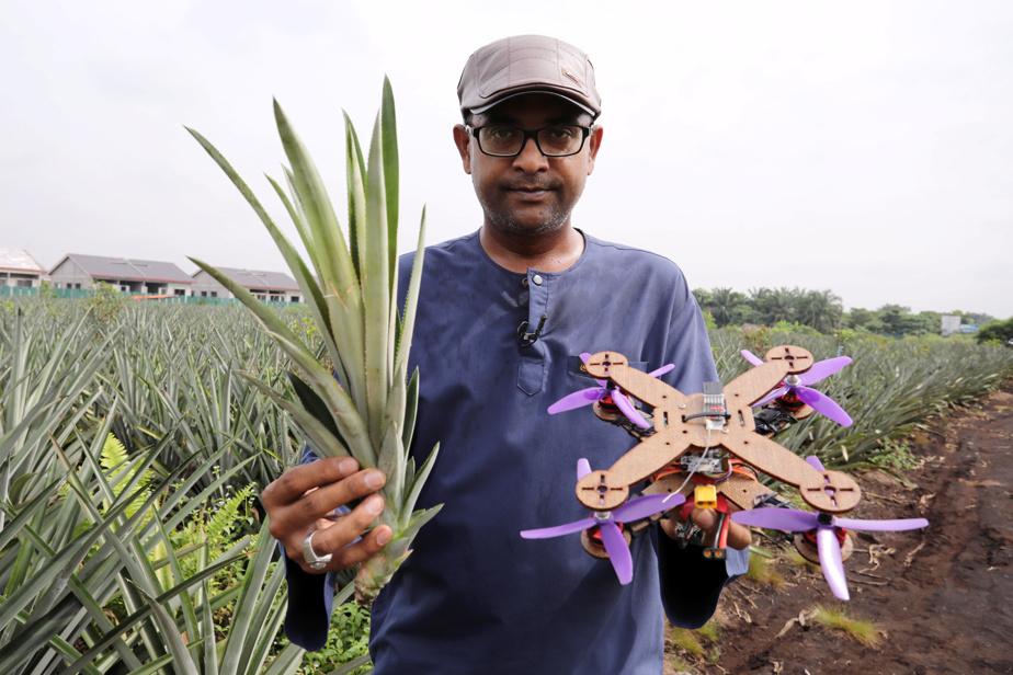 Le professeur Mohamed Thariq, de l'Université Putra Malaysiua, tenant un drone fait de feuilles d'ananas.