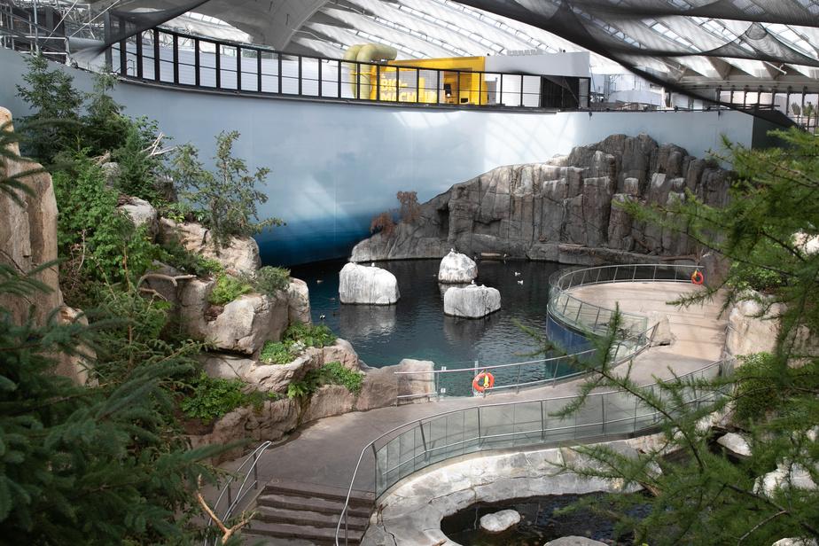 Une nouvelle mezzanine surplombe trois des écosystèmes du Biodôme, dont celui du golfe du Saint-Laurent.