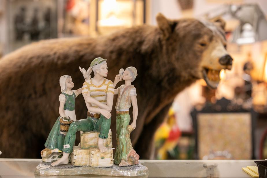De l'ours empaillé au bibelot antique, il y en a pour tous les goûts!