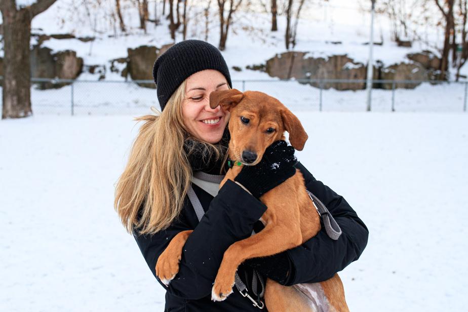 15janvier2020. Marilou David et Anu. La Montréalaise veut faciliter le placement de chiens errants en Inde dans des familles québécoises à la recherche d'un animal. Elle a créé une page Facebook où elle offre des conseils sur l'adoption internationale de ces bêtes.