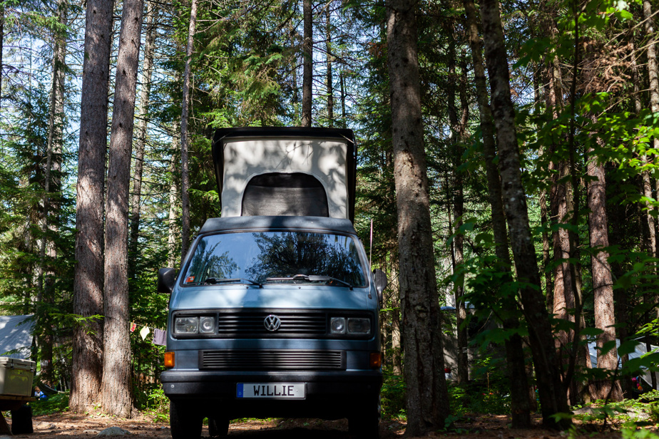 Willie attend sagement sous les hauts cèdres qui gardent notre emplacement de camping au frais.