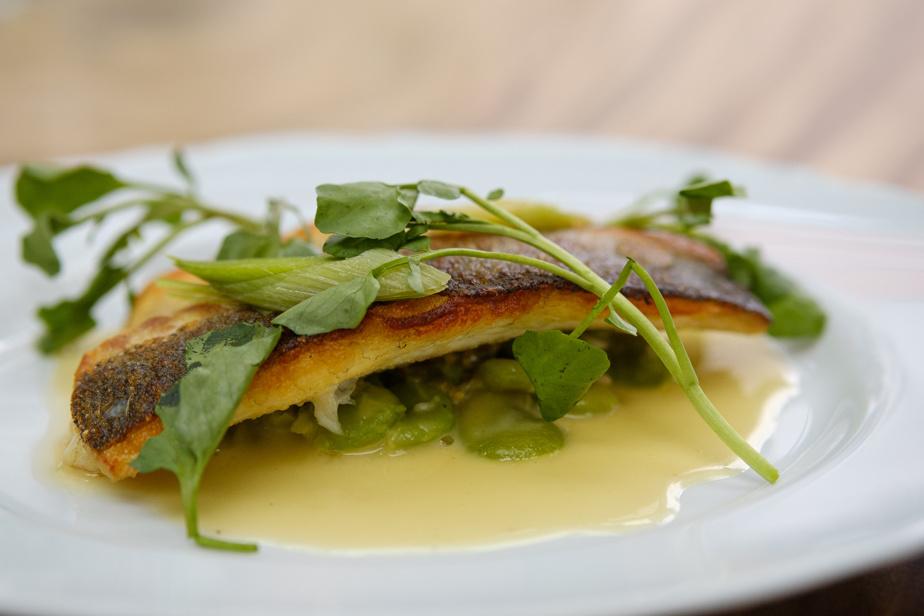 Le poisson passion est un des plats les plus originaux du menu: loup de mer poêlé, beurre blanc au fruit de la passion, gourganes, poireau et cresson.