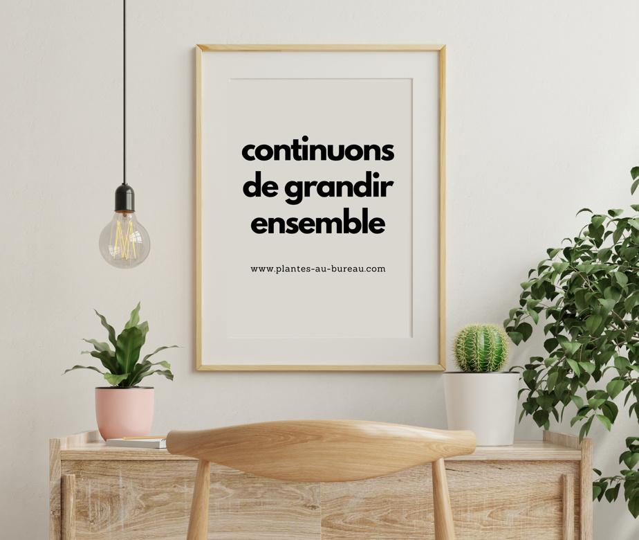 Une affiche proposée par le Bar à plantes