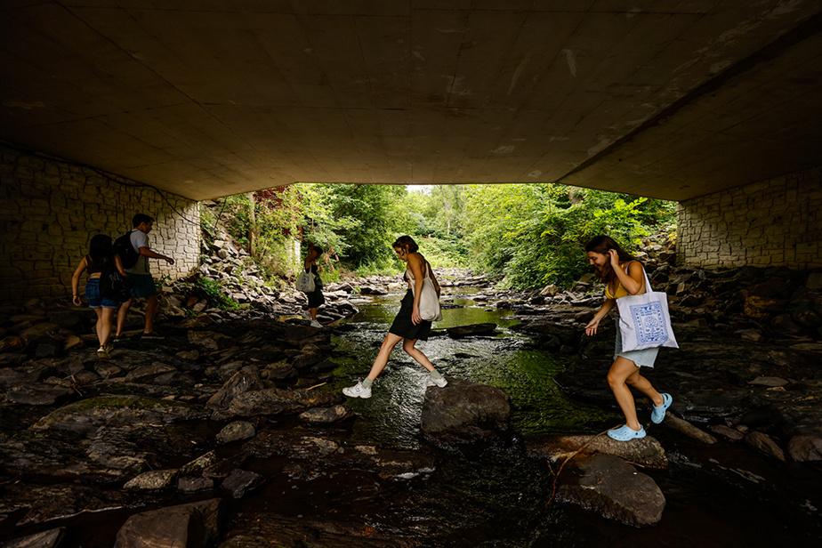 Nora, Jules, Maya, Camille et Marilou se baladent sur la rivière aux Brochets à Frelighsburg, après une baignade rafraîchissante.