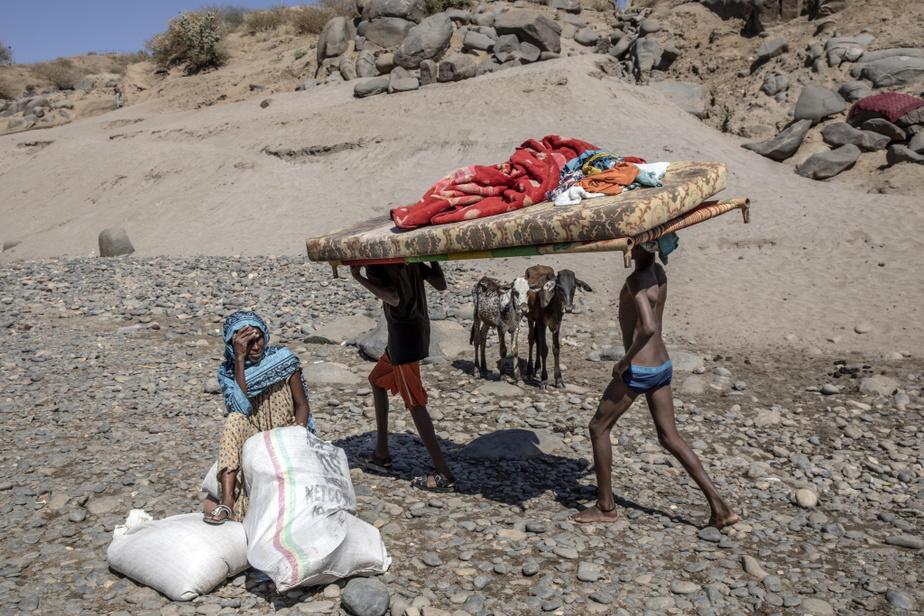Des réfugiés de la guerre qui fait rage au Tigré, en Éthiopie, viennent de rallier le pays voisin, le Soudan, à l'instar de 45000compatriotes qui s'entassent aujourd'hui dans des camps.