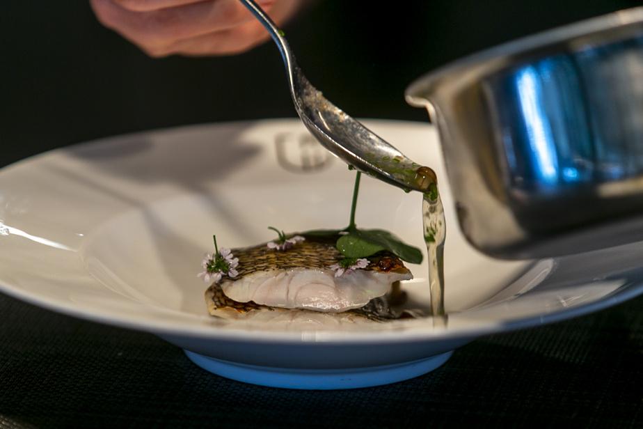 Le bar noir avec champignons shimeji, huile de coco et ciboulette est un des plats les plus populaires du Marcus actuellement.