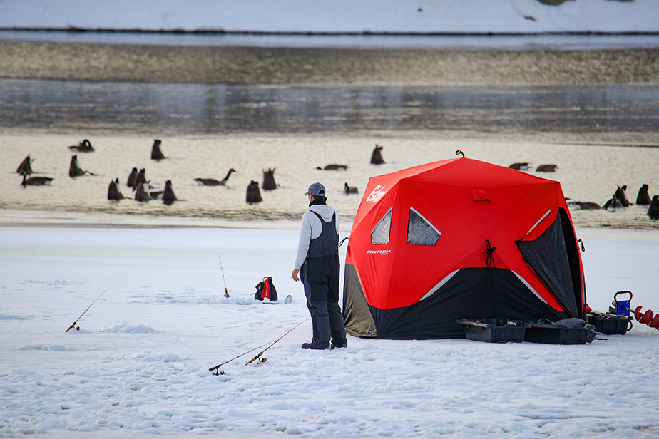 Un pêcheur sur glace observe des bernaches sur le fleuve Saint-Laurent à Saint-Lambert… ou est-ce lecontraire?