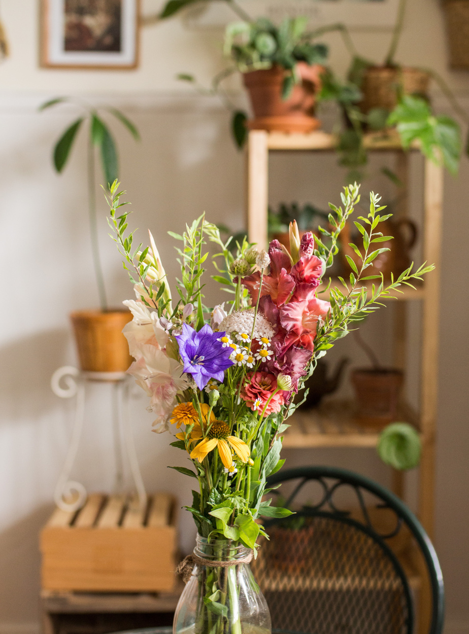 Featured in August: Chamomile, Gladiolus, and Platycodon