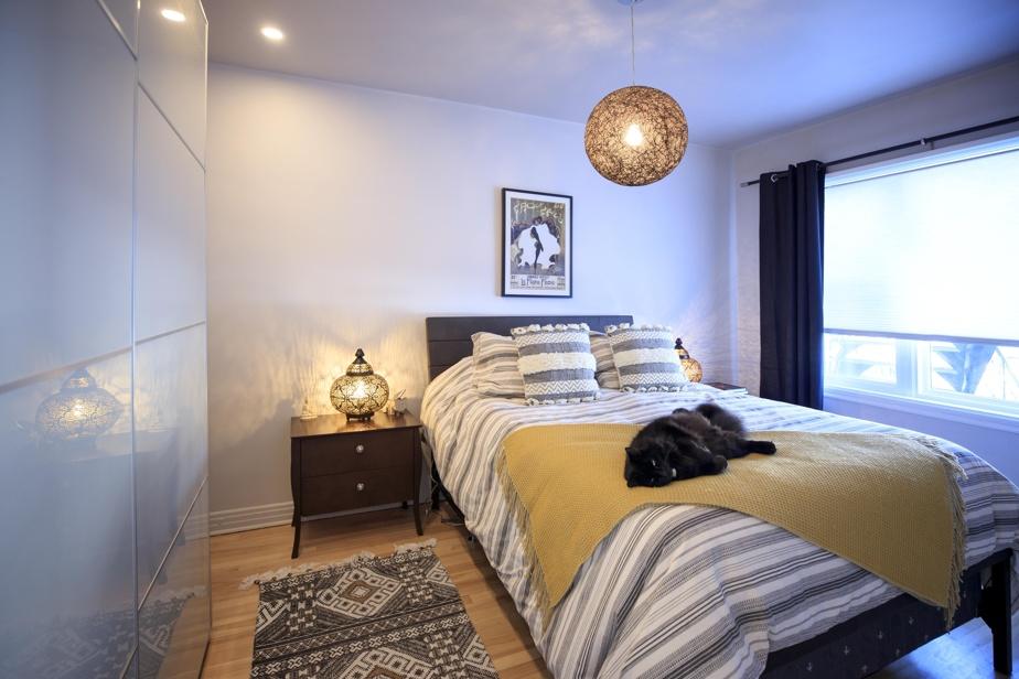 Le chat Angelo se prélasse confortablement sur le lit dans la chambre principale.
