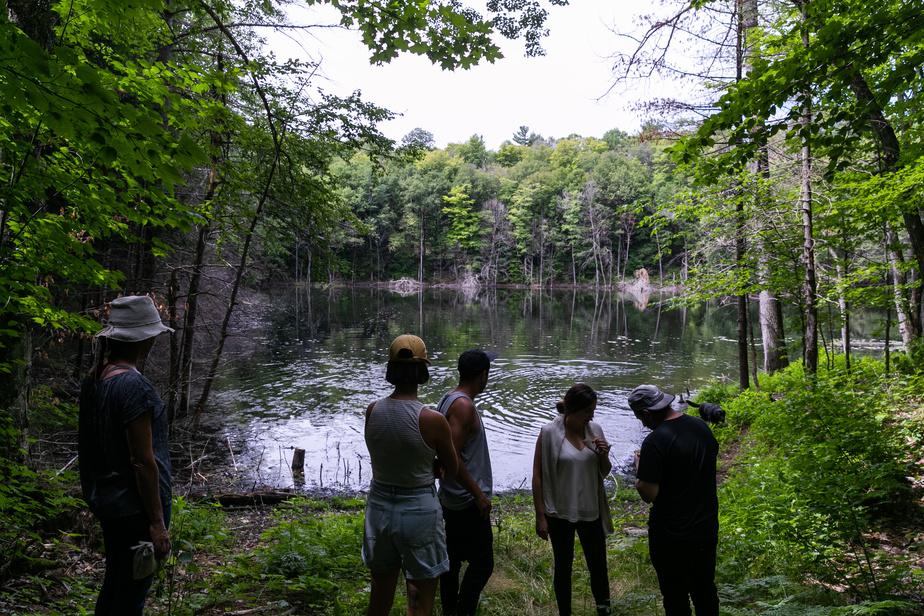 La propriété comprend aussi deux lacs cachés dans la forêt.