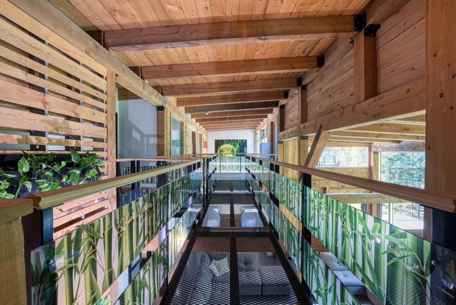 La passerelle qui permet de relier les pièces du haut, tout en offrant une vue imprenable sur le rez-de-chaussée. Les tiges de bambou imprimées sur le plexiglas font de l'effet.