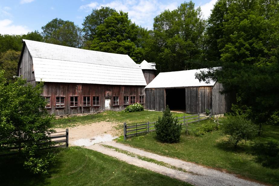 Les bâtiments de la ferme sont fonctionnels. La propriétaire garde une douzaine de vaches et des veaux.