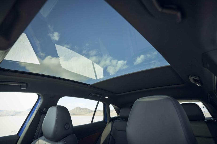 Volkswagen propose un groupe d'options (8000$) qui comprend notamment un traitement bicolore et un immense toit panoramique fixe.