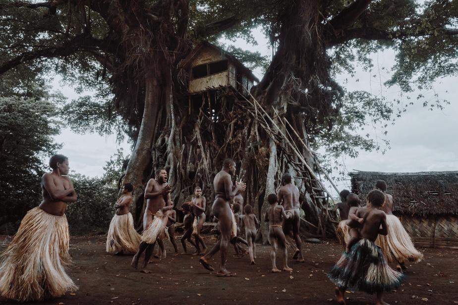 Des familles du village de Yakel, dans l'île de Tanna, à Vanuatu, dansent autour d'un immensebanian.