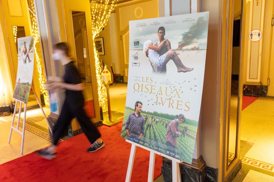 Le film Les oiseaux ivres avait droit à son tapis rouge mardi soir, au cinéma Impérial, à Montréal, où avait lieu la première québécoise.