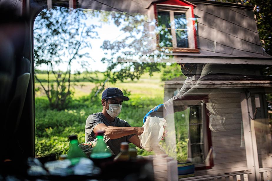 15juin2020. Le Déli-Mex livre des produits importés d'Amérique latine aux étrangers travaillant dans les champs des agriculteurs de l'île d'Orléans. Ici, Alejandra Hernandez aide un travailleur à terminer ses emplettes à la ferme Léonce Plante.