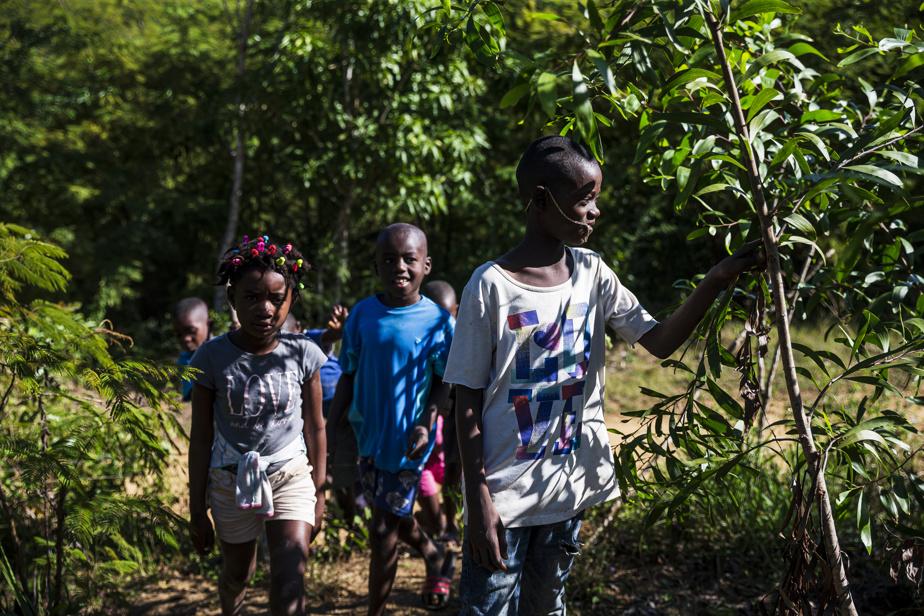 Des enfants jouent dans une parcelle récemment reboisée à Acul Samedi, dans le cadre du projet KLIMA.