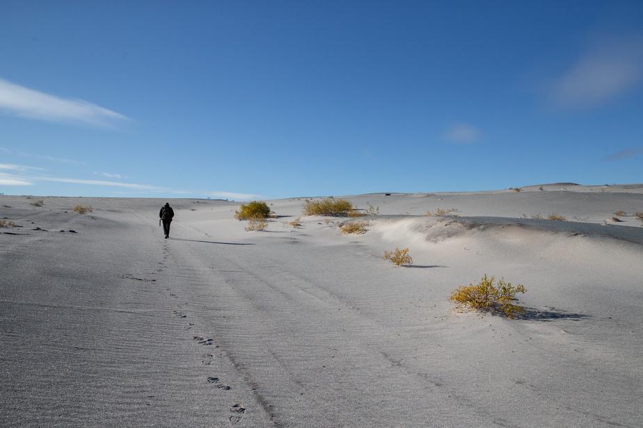 Ce qui ressemble à un désert de sable est en fait l'ancien parc à résidus de la mine de fer du lac Jeannine. La mine fermée en 1976 a laissé en héritage cette immense surface de 400hectares. Le site est inscrit dans le passif des sites contaminés et il est sous la responsabilité de Québec.
