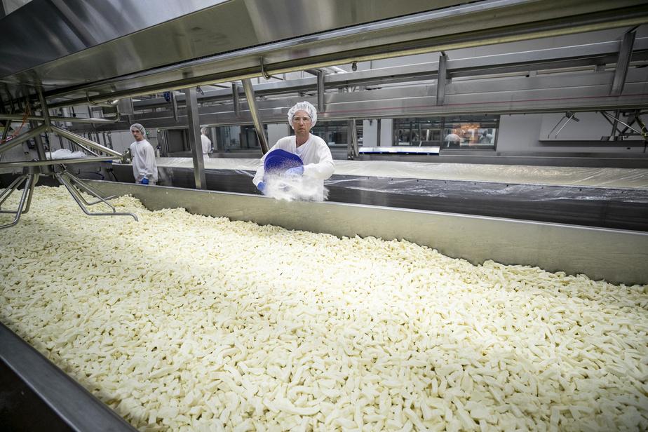 À la Fromagerie Saint-Guillaume, il est possible de voir, à travers des vitres, les employés en train de confectionner le fromage en grains.