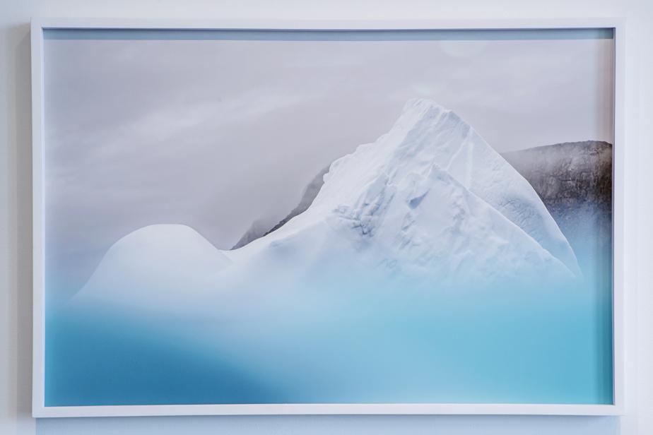 The Long View, œuvre de 2015 de Jessica Houston