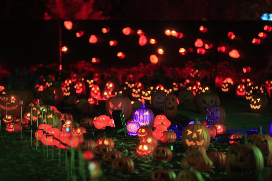 Cette année, des éléments de décor inspirés de l'Halloween ont été ajoutés.