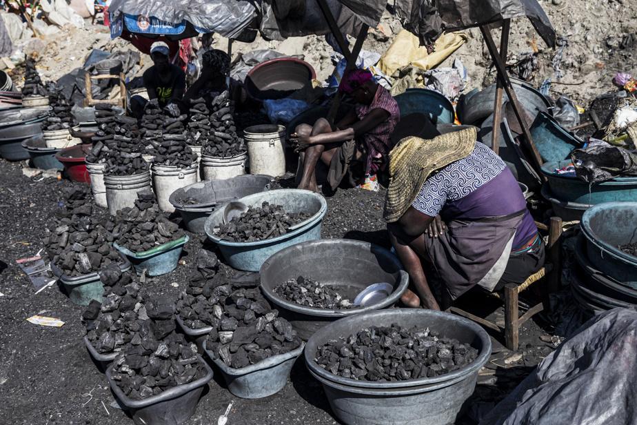 Le marché du charbon à Cap-Haïtien, où se concentre la vente de cet «or noir». Ce sont généralement les femmes qui le vendent, et les hommes qui le produisent. Un sac de 55kg se vend 750gourdes (12,75$) en milieu rural, et jusqu'à 1200gourdes (20$) à Cap-Haïtien. Le prix du charbon est encore plus élevé durant la saison des pluies, quand il est plus ardu d'en produire.