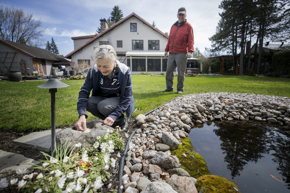 Huguette Larocque and Clément Bessette are in the English-inspired garden, the very first they have created at the back of their house.  Greek anemones have already started to bloom around a pond, which will be filled with water lilies this summer.