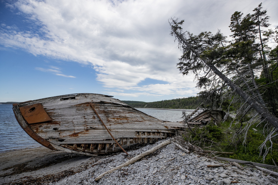 Pris au piège par le «rif» anticostien, près de 400navires se sont échoués aux abords de l'île, dont le Wilcox, ancien dragueur de mines de la Seconde Guerre mondiale.