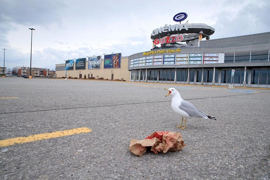 9avril2020. Symbole de la vie culturelle et sociale qui est également mise sur pause, le stationnement est complètement désert devant le cinéma Guzzo, à Laval. Même les oiseaux semblent trouver le temps long en ce printemps hors normes.