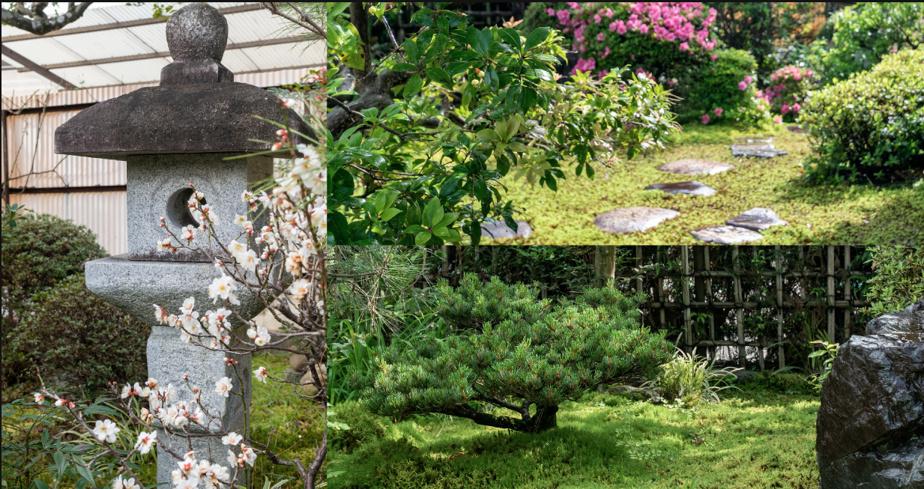 Le jardin japonais a été très bien entretenu et fait écran par rapport à la ville.