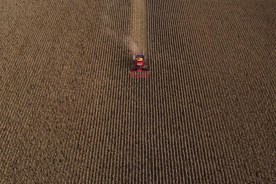 6novembre2020. Vue aérienne de travaux agricoles dans un champ de la Montérégie