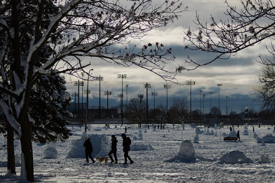 Dans de nombreux parcs, chaque parcelle de neige semble avoir été prise d'assaut par les Montréalais, qui s'en sont visiblement donné àcœurjoie!