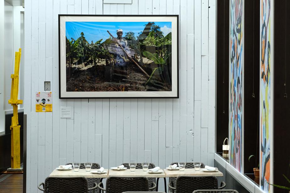 De nombreuses œuvres d'artistes d'origine haïtienne décorent les lieux, dont cette photo de Darwin Doleyres.