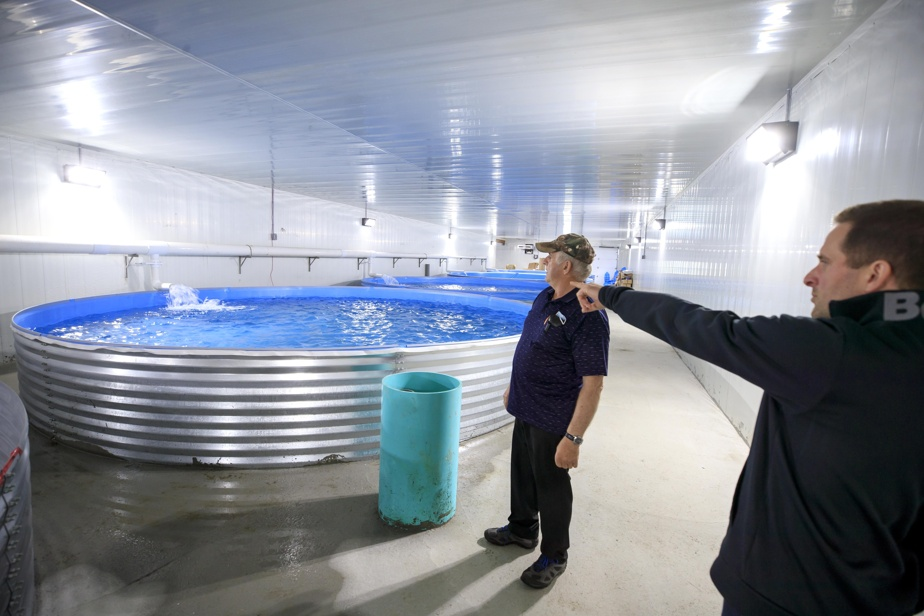 Normand et Clément Roy dans la nouvelle unité de cuves de la Ferme piscicole des Bobines