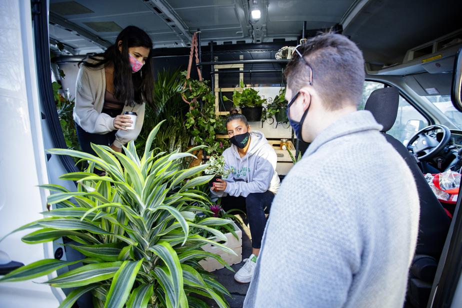 Les clients Franscica Scalia et Jacques LeBon Stevenson sélectionnent leur plante en compagnie de Cynthia Polanco.