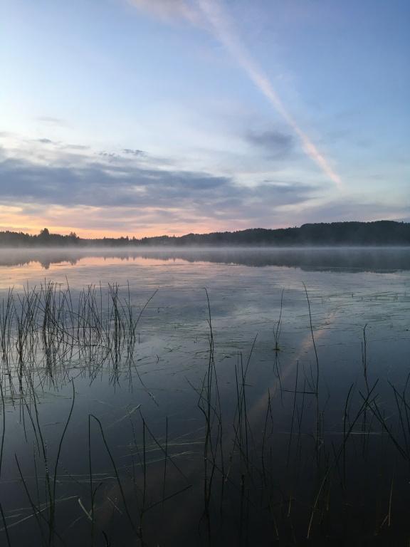 «Voici une photo prise au lac Caste, dans la municipalité de Mont-Brun, non loin de Rouyn. Je devais me rendre en Abitibi et nous avons décidé d'y louer un chalet au lieu d'un hôtel. Cette photo décrit mon émotion vécue aux premières lueurs de l'aube, avec, dans mes narines, la douceur de la bouffée d'air humide et frais.» — Anie