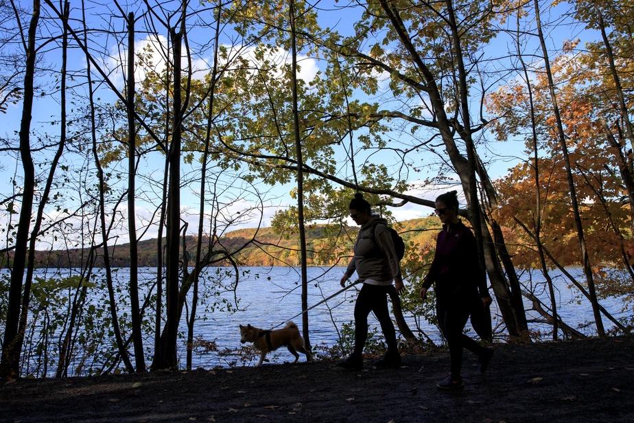 Deux femmes prennent un bol d'air frais autour du lac du Moulin.