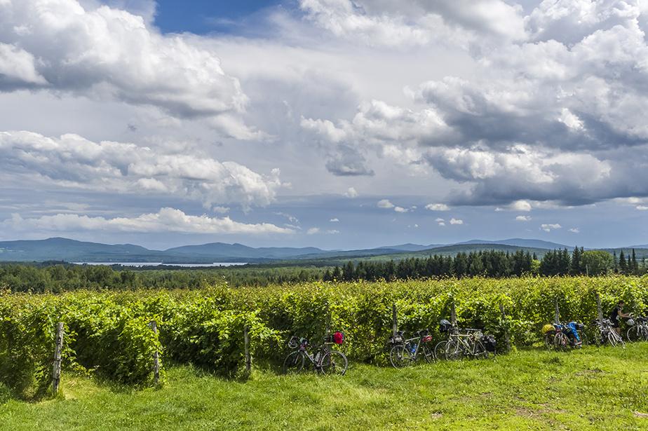 L'été prochain, le Québec sera à l'honneur pour les voyages vélo.