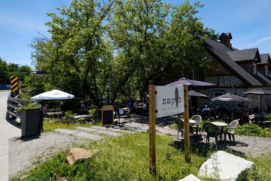 Avantageusement situé aux abords du ruisseau Cold, le bistro Sapin a pris la relève du populaire Star Café avec une carte qui met la cuisine locale au premier plan.