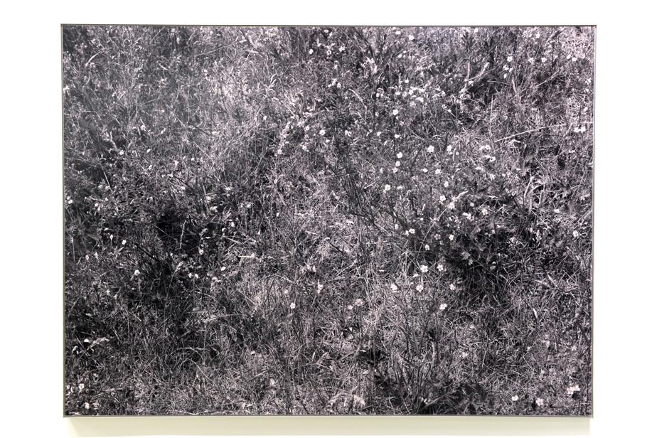 Une photographie de l'exposition Passages vers l'abstraction