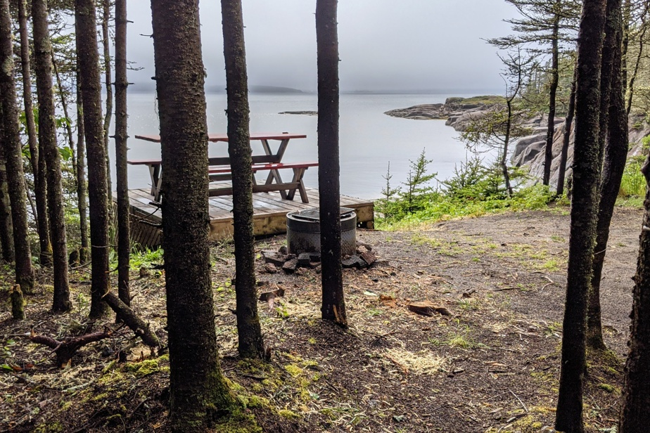 Les jolis sentiers de l'île Grande Basque donnent accès à des plages, des anses et des criques autour desquelles sont aménagées quelques aires de camping, dont une tente de type prêt-à-camper.