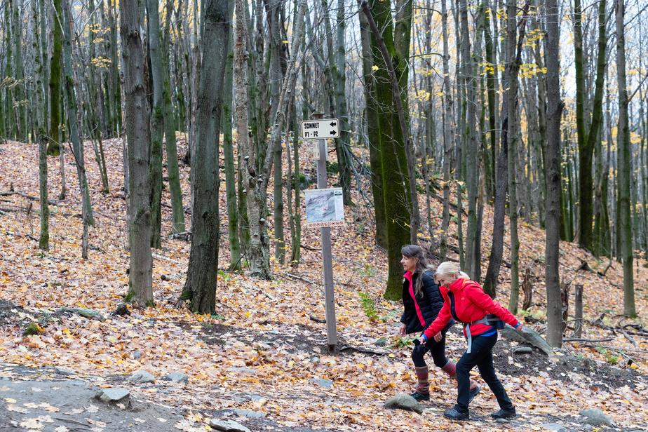 Le parc des Montagnards propose une boucle de près de 5km, en passant par le sommet, à 485m. Le point le plus élevé offre une vue sur le lac Brome et les montagnes Vertes.