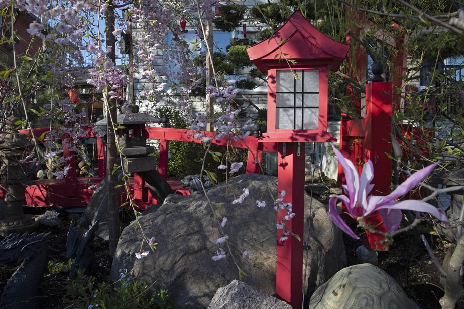 In the evening, the lanterns light up and cast a soft light in the skillfully lit garden.