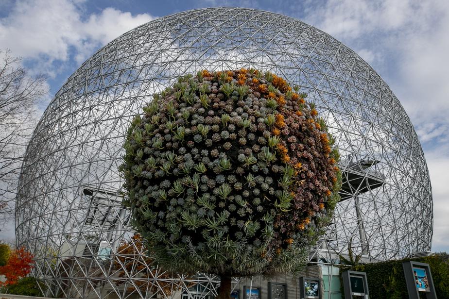 Ce dôme géodésique a commencé sa vie comme pavillon des États-Unis à Expo 67. Aujourd'hui, la Biosphère abrite le musée de l'environnement. Cette photo a été possible parce que la grande fontaine où se trouve cet arbre décoratif est maintenant vide, ce qui a permis au photographe de le placer parfaitement au centre du dôme