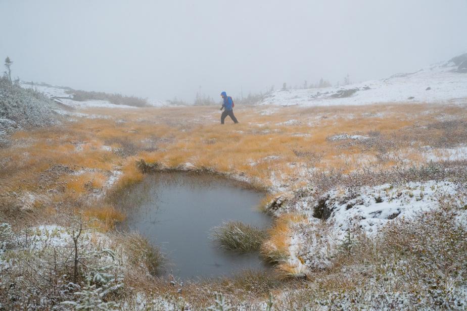 L'amateur moyen de randonnée peut profiter des splendeurs des sommets des monts Groulx avec une randonnée de quatre heures jusqu'au sommet du mont Harfang.